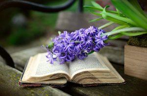 """""""Wiosna z książką"""" @ Biblioteka Publiczna Wyrzysk"""