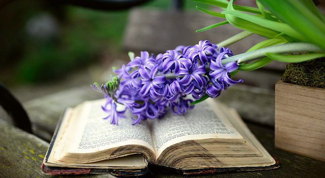 Wiosna z książką